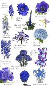 Flower Names By Color Flowers Blue Wedding Flowers