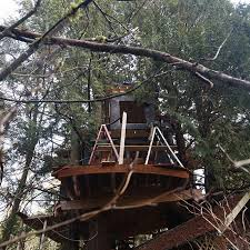 Watch Treehouse Masters Episodes Online  SideReelTreehouse Masters Free Episodes