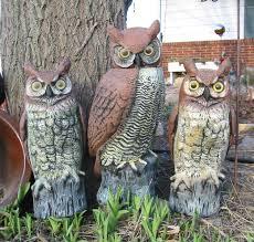 owl outdoor decor
