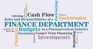 Department Of Finance Organisation Chart Roles And Responsibilities Of A Finance Department In A
