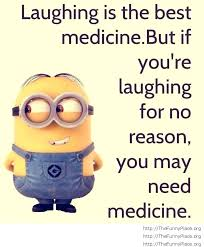Funny Motivational Quotes Work Adorable Humorous Motivational Quotes Of The Day For Work Best Quote 48