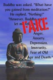Many of the buddha quotes we still repeat today came from his personal experiences during this time. Buddha Was Asked What Have You Gained From Meditation The Buddha Replied Nothing At All Fake Buddha Quotes