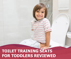15 Potty Training Seats For Boys And Girls In 2019