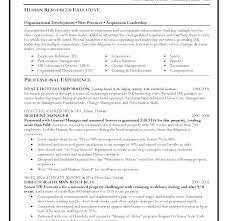 Executive Resume Template Word Stunning Executive Resume Template Word Marvelous Sample Senior Core