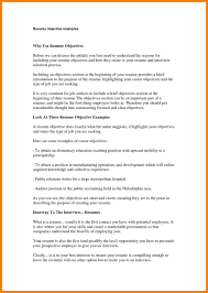 What To Write A Resume Objective Examples Business Writing A Resume