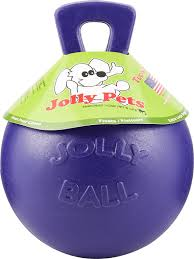 Jolly Pets Tug N Toss Dog Toy Purple 10 In