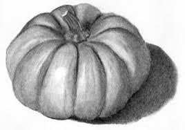 pumpkin drawing color. picture pumpkin drawing color