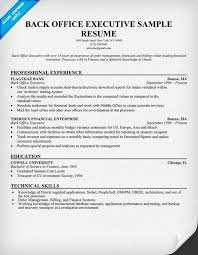 Sample Resume For Back Office Executive Enchanting Office Executive