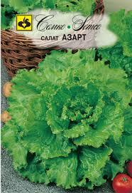 <b>Семена салата Азарт</b>. Купить <b>семена</b> полукочанного <b>салата</b> ...