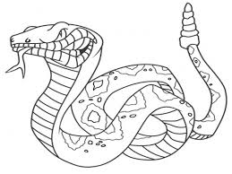 Small Picture Snake Coloring Pages 16 Coloring Kids