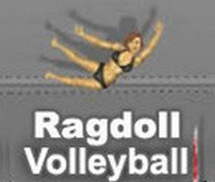 play ragdoll volleyball