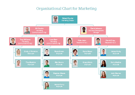 Org Chart Visualization Marketing Org Chart Organizational Chart Design