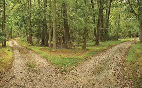 robert frost s the road not taken analysis schoolworkhelper  robert frost everyone is a traveler choosing the roads