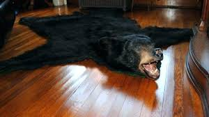 bear skin rug quality bearskin rug marvelous bear skin in front of fireplace pics decoration taxidermy