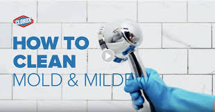 how to clean mold in the shower on bathroom walls