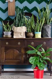 unique-plant-pots
