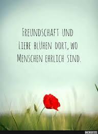 Freundschaft Und Liebe Blühen Dort Wo Menschen Ehrlich Sind