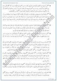 essay in urdu the culture of cultural studies essay