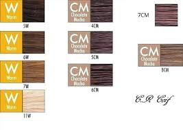 Chi Hair Color Chart Chi Ionic Hair Color Fajarpapua Co