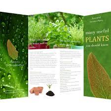 Brochure Samples Brochure Templates Samples Brochure Maker Publisher Plus