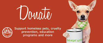 animal shelter donate. Delighful Donate Animal Shelter Donate To Support Homeless Pets Cruelty Prevention  Education Programs And More Throughout I