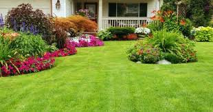 Small Picture 11 beautiful Rose Garden Designs for small yard Homelilys Decor