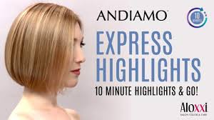 Express Highlights With Aloxxis Andiamo Express Permanent Colour