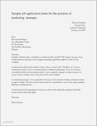 Resume Examples For Marketing Position Awesome Marketing Manager