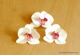 Paper Orchid Flower Orchid Paper Flower Template Under Fontanacountryinn Com