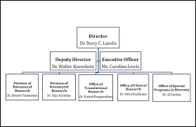 Small Construction Company Organizational Chart Ninds 2015 Congressional Budget Justification National