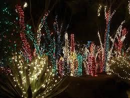 Outside Christmas Lights Christmas Light Show Xmaspin