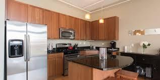 West Loop One Bedroom Condo   Kitchen