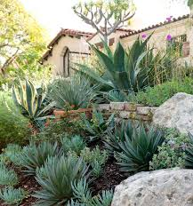 Small Picture 1349 best Palm Springs Style Gardening in the Desert images on