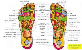 bottom of foot anatomy diagram   healthsanaz combottom of foot anatomy diagram