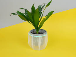 Engineers Invent Origami Inspired Self Watering Pots That