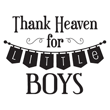 Little Boy Quotes Awesome Thank Heaven For Little Boys Banner Wall Quotes™ Decal WallQuotes