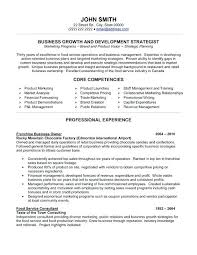 Sample Resume Business Owner Accomplishments Examples Resume