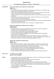 Musical Theatre Resume Captivating Musical Theatre Resume Template Word With Additional 68