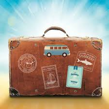 How To Avoid Lost Luggage Situations Trackimo
