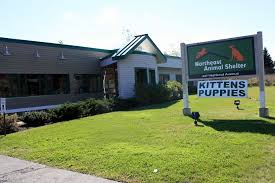 animal shelter buildings. Fine Animal Our Building The Compassion That Founded Northeast Animal Shelter  In Buildings