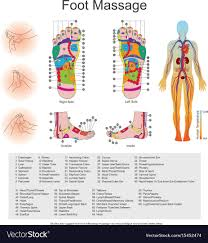 Reflexology Foot Chart Top Of Foot Foot Massage Point Charts