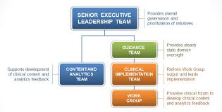 University Of Utah Hospital Org Chart Best Organizational Structure For Healthcare Analytics