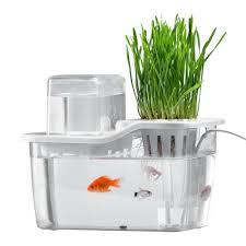 details about mini aquaponics ecosystem hydroponics fish tank water garden ecological t3c2