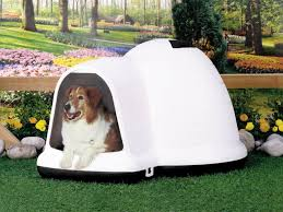 decorative dog doors. Large Dog Door Awesome The Best Materials For Decorative Crates Doors