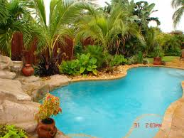 impatiens pool landscaping plants swimming best around hardy pools above ground friendly trees potted palm anese