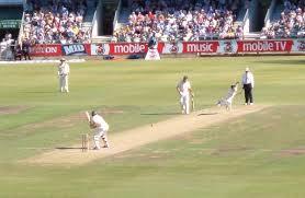 cricket simple english the encyclopedia
