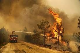 """ضحايا حرائق غابات تركيا بارتفاع.. وأردوغان يعلن 4 ولايات """"مناطق منكوبة"""""""
