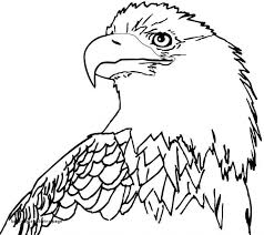 Eagle Coloring Pages Inspirational 23 Bald Eagle Coloring Page