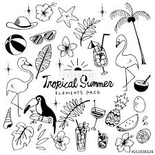 Tropical Summer Illustration Pack Stock Image And Royalty Free