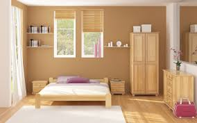 Paint Color For Bedroom Room Colour